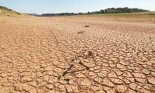فرسایش سالانه 10 تن خاک در همدان